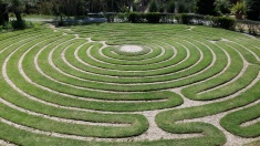 grass-labyrinth
